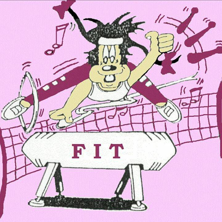 Gymnastiek vereniging FIT